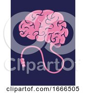 Brain Usb Illustration