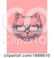 Cat Sketch Sunglasses Illustration