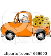 Cartoon Farmer Driving A Truck Full Of Sunflowers