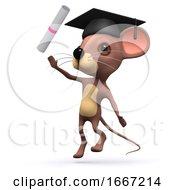 3d Mouse Graduates