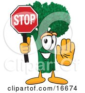 Green Broccoli Food Mascot Cartoon Character Holding Up A Stop Sign