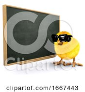 3d Baby Chick At The Blackboard