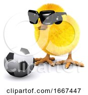 3d Soccer Chick In Sunglasses