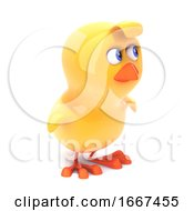 Poster, Art Print Of Little Chick Turns To The Side