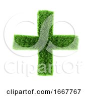 3d Green Grass Plus Symbol by Steve Young