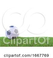 3d Football On Grass Pitch