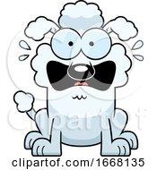 Cartoon Scared White Poodle Dog