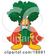 Green Broccoli Food Mascot Cartoon Character Wearing A Super Hero Costume