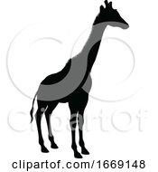 09/14/2019 - Giraffe Animal Silhouette