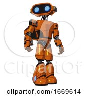 Bot Containing Dual Retro Camera Head And Cute Retro Robo Head And Yellow Head Leds And Light Chest Exoshielding And Prototype Exoplate Chest And Rocket Pack And Light Leg Exoshielding