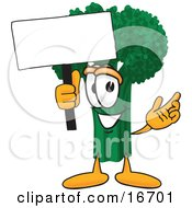 Clipart Picture Of A Green Broccoli Food Mascot Cartoon Character Holding A Blank White Sign by Toons4Biz