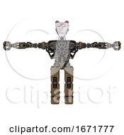 Bot Containing Humanoid Face Mask And Red Slashes War Paint And Heavy Upper Chest And No Chest Plating And Prototype Exoplate Legs Old Copper T Pose