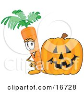 Orange Carrot Mascot Cartoon Character Standing By A Carved Jack-O-Lantern Halloween Pumpkin