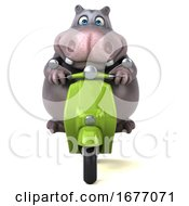 3d Hippo Riding A Scooter On A White Background