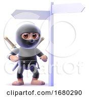3d Ninja Directions
