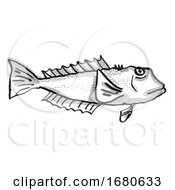 Blue Cod New Zealand Fish Cartoon Retro Drawing