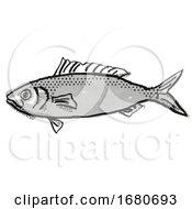 Australian Herring Fish Cartoon Retro Drawing