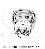 Emperor Tamarin Monkey Cartoon Retro Drawing