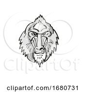 Mandrill Monkey Cartoon Retro Drawing