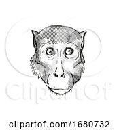 Rhesus Macaque Monkey Cartoon Retro Drawing