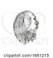 Cavalier King Charles Spaniel Dog Breed Cartoon Retro Drawing