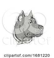 Cane Corso Dog Breed Cartoon Retro Drawing