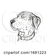 Catahoula Leopoard Dog Breed Cartoon Retro Drawing