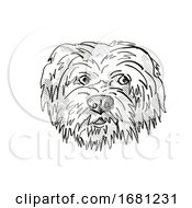 Havanese Dog Breed Cartoon Retro Drawing