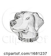 Blue Lacy Dog Breed Cartoon Retro Drawing