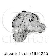Boykin Spaniel Dog Breed Cartoon Retro Drawing