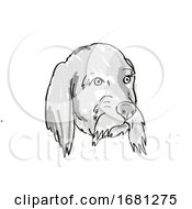 Basset Fauve De Bretagne Dog Breed Cartoon Retro Drawing
