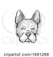 Poster, Art Print Of Boston Terrier Dog Breed Cartoon Retro Drawing