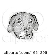 Afador Or Afghan Lab Dog Breed Cartoon Retro Drawing
