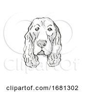 Field Spaniel Dog Breed Cartoon Retro Drawing