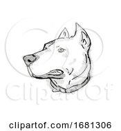 Poster, Art Print Of Dogo Argentino Or Argentinian Mastiff Dog Breed Cartoon Retro Drawing