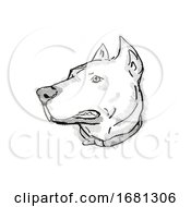 Dogo Argentino Or Argentinian Mastiff Dog Breed Cartoon Retro Drawing