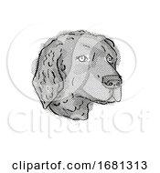 Curly Coated Retriever Dog Breed Cartoon Retro Drawing