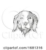 Brittany Or Brittany Spaniel Dog Breed Cartoon Retro Drawing