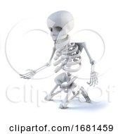 3d Skeleton Kneels To Look At Something