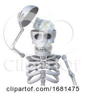 3d Skeleton Reveals A Map Inside Its Skull