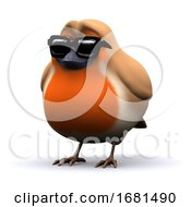 Poster, Art Print Of 3d Cool Robin In Sunglasses