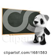 3d Panda Teacher