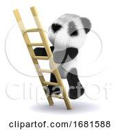 3d Ladder Panda