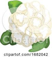 White Cauliflower With Green Leafs