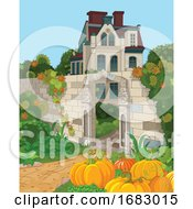 Garden Of Pumpkins Near A House