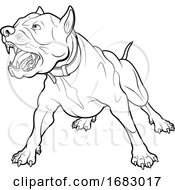 Poster, Art Print Of Black And White Angry Pit Bull Dog