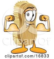 Clipart Picture Of A Scrub Brush Mascot Cartoon Character Flexing His Strong Bicep Arm Muscles