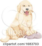Poster, Art Print Of Labrador Puppy