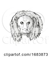 Uakari Endangered Wildlife Cartoon Retro Drawing