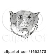 Pied Tamarin Endangered Wildlife Cartoon Retro Drawing